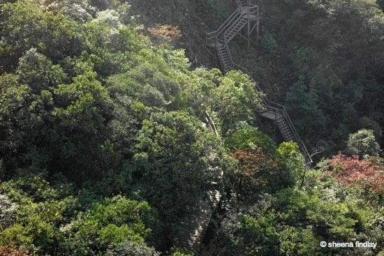 3.-The-pathway-up Tian Tan Buddha, Hong Kong
