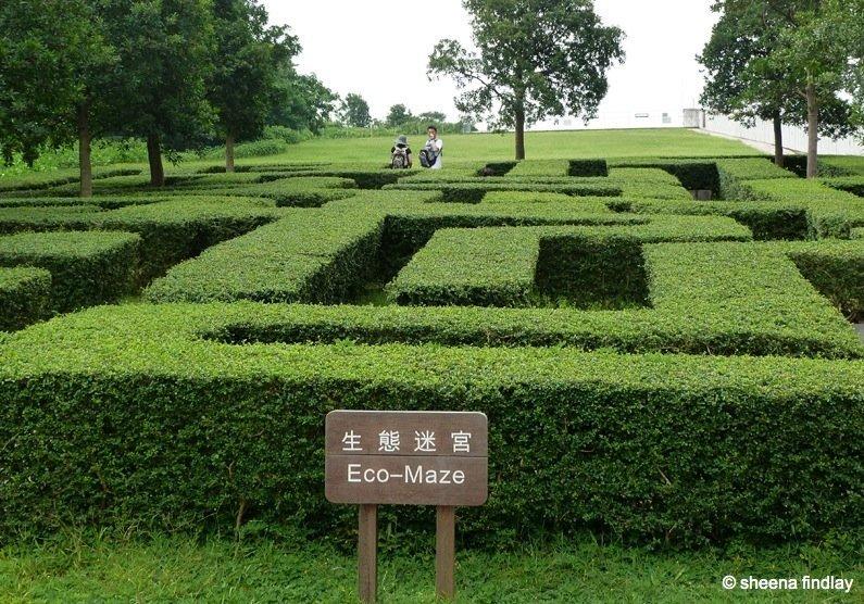 38.-Childrens-Maze The Wetland Park, Hong Kong