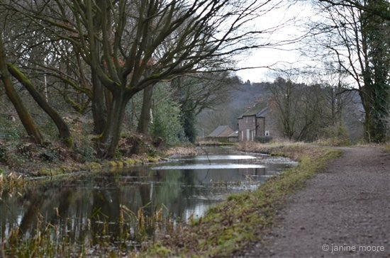 Shining Cliff to Alderwasley circular walk via Cromford Canal
