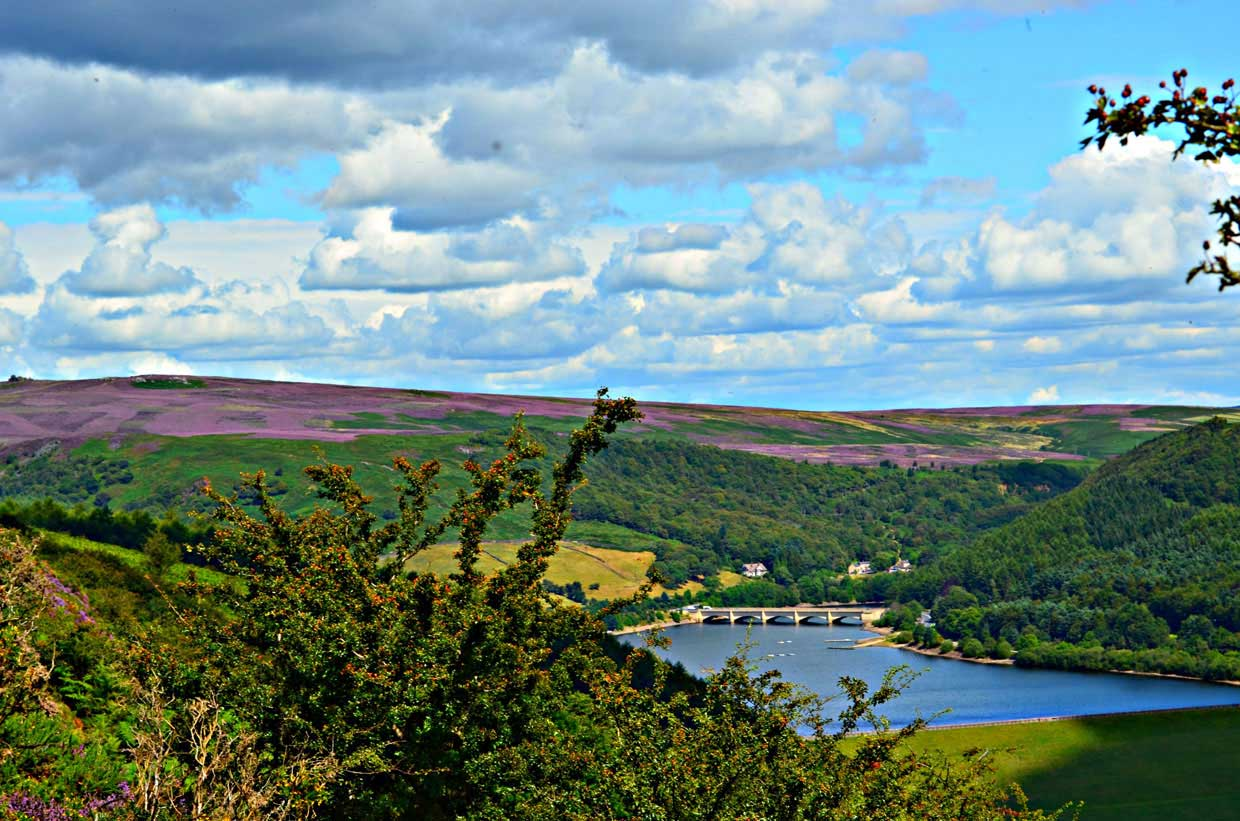 6.-Ladybower-Reservoir-Below-Heather-on-the-Hills1 Hope Valley Circular Via Bamford Village