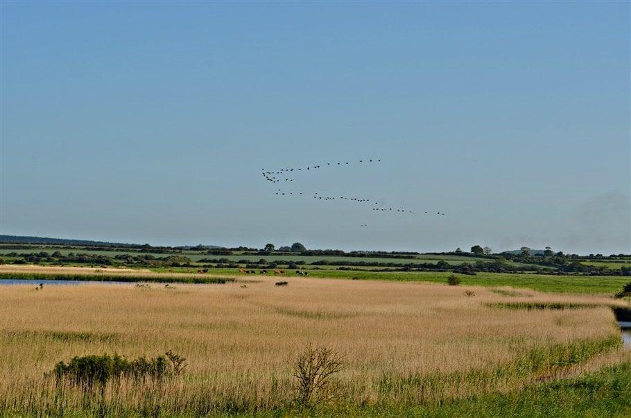6. Norfolk countryside- norfolk