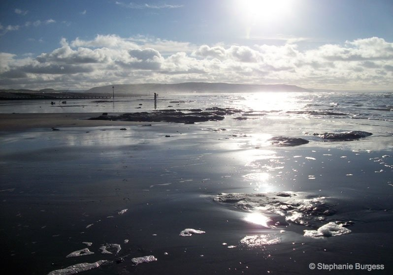 7-wales- The Bronze Age, Submerged Forest, Borth Beach