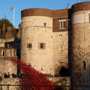 The Tower of London and the 100 year anniversary of the First World War