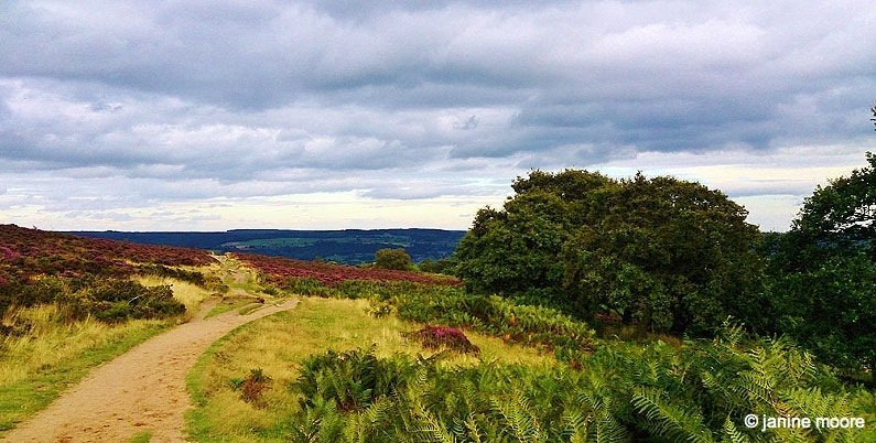 Ancient-tracks Stanton Moor and the Nine Ladies in the Derbyshire Dales