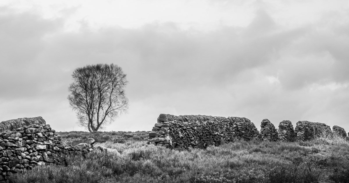 B-w-tree-wall Eyam, The Peak District's Plague Village