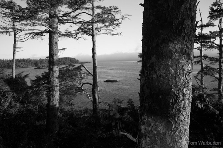 BW Blog 4 canada Atmosphere of Tofino, British Columbia