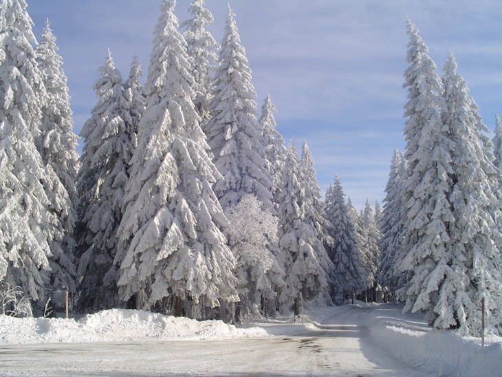 Winter Magic Of The Black Forest 2