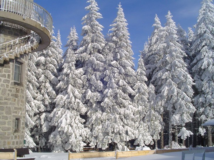 Winter Magic Of The Black Forest 5