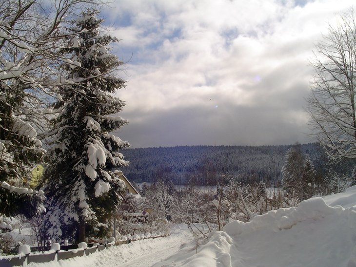 Winter Magic Of The Black Forest 6