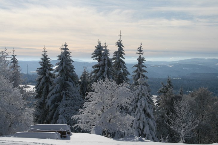 Winter Magic Of The Black Forest 7