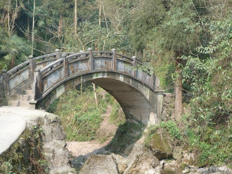A hike up and across Qingcheng Mountain of China