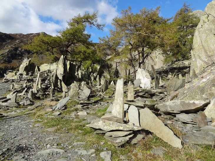 Castle_Crag_521 Castle Crag – Bounding Up To Borrowdale Beauty