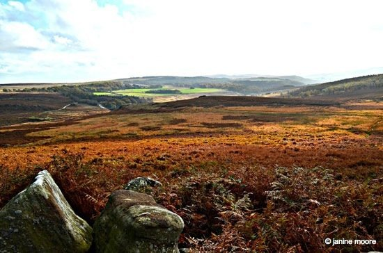 Colours-of-bracken-looking-down-from-the-fort A Tranquil Walk on Hathersage Moor