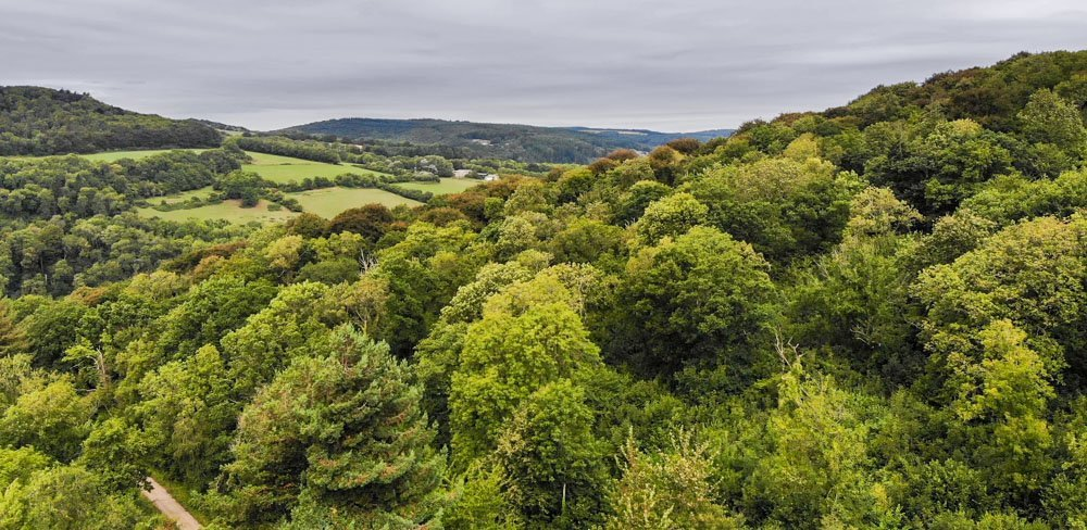 DJI_0129-1 A Walk To Devil's Pulpit, Overlooking Tintern Abbey