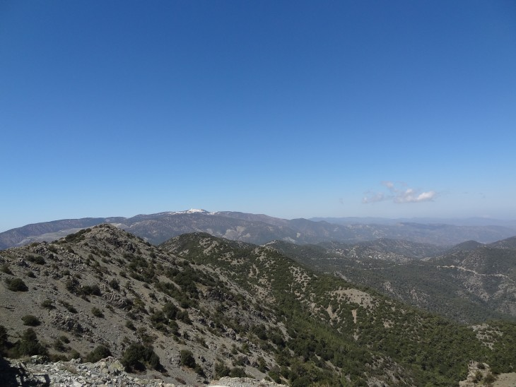 DSC00232 730x548 Hiking High In The Troodos Mountains of Cyprus