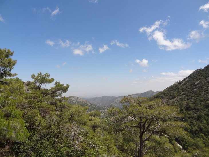 DSC00245 Hiking High In The Troodos Mountains of Cyprus