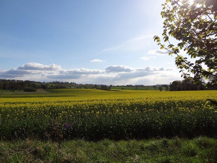DSC00333 Beautiful Britain – Entrancing Views Along The A68