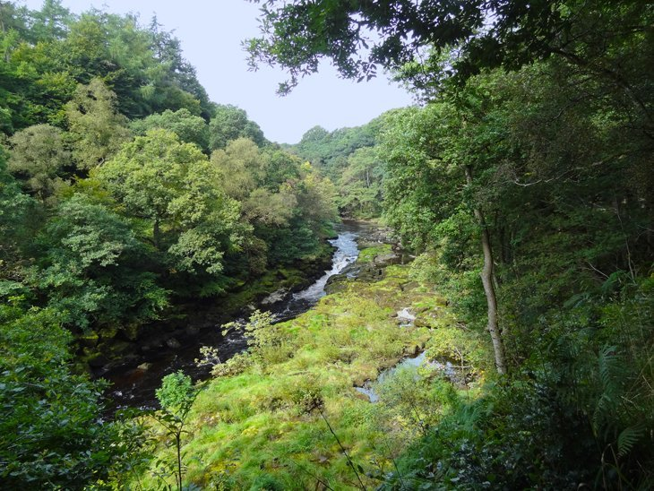 Bolton Abbey – Around The Ruins And Through Strid Wood