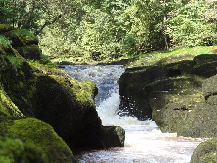 Bolton Abbey - Around The Ruins And Through Strid Wood