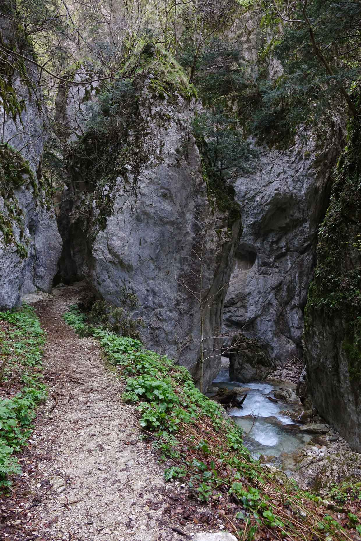 Hike through the Gorge dell'Infernaccio up to the Hermitage of San Leonardo