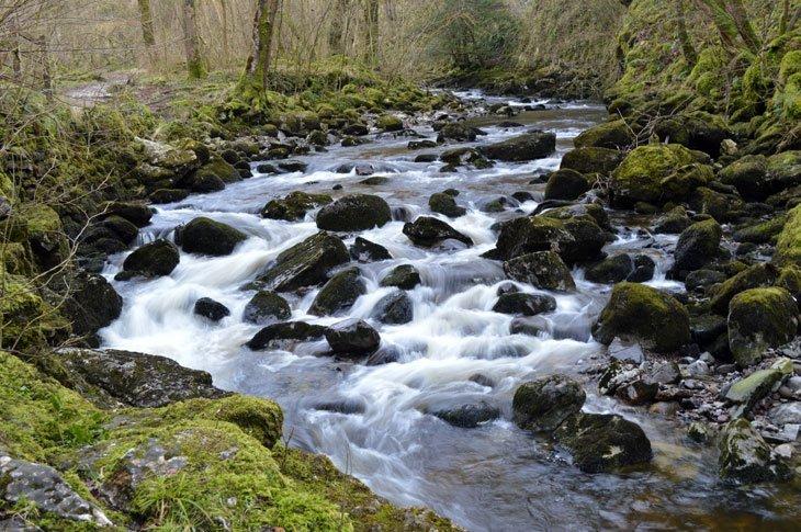 Ingleton Waterfalls Walk – A Setting For The Senses 2