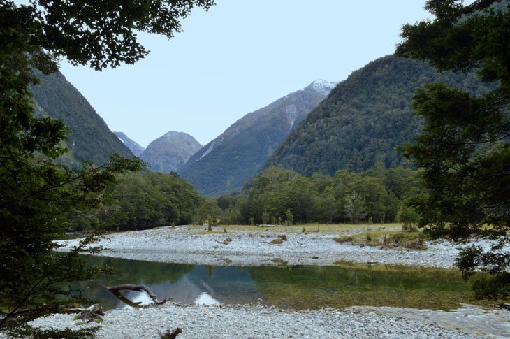 DSC 01111 Milford Track Day Two   Alone With Pure Nature