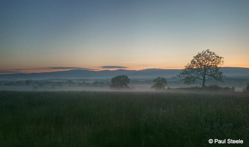 Misty dawn, Eden Valley