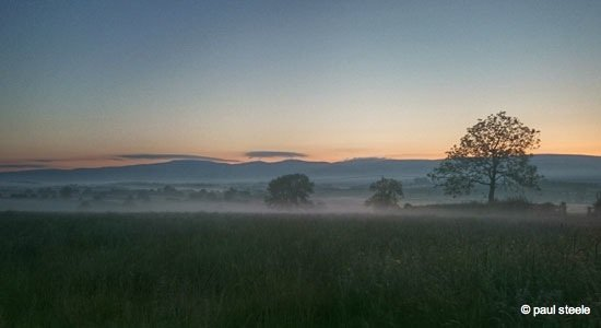 Sunrise variety of the Eden Valley