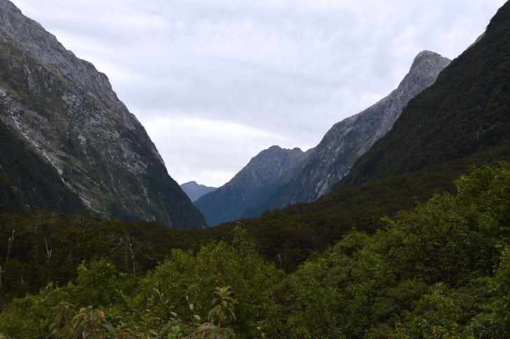 Milford Track Day Two - Alone With Pure Nature