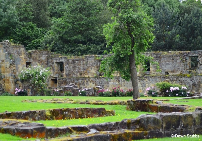 DSC_02471 Mount Grace Priory – Britain's best preserved Carthusian priory