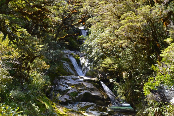 Milford Track Day 4 - Paradise To The End