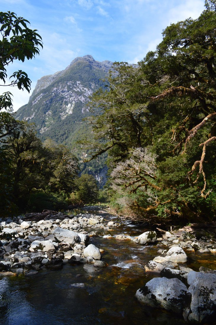 Milford Track Day Four – Paradise To The End