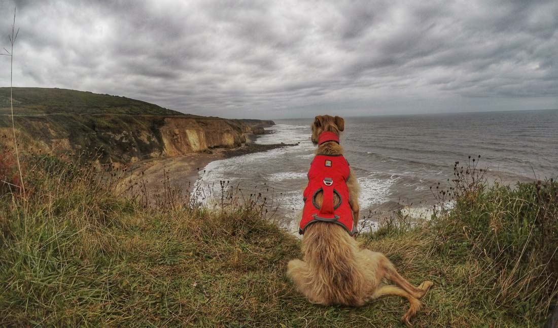 Walk Along The Durham Heritage Coast