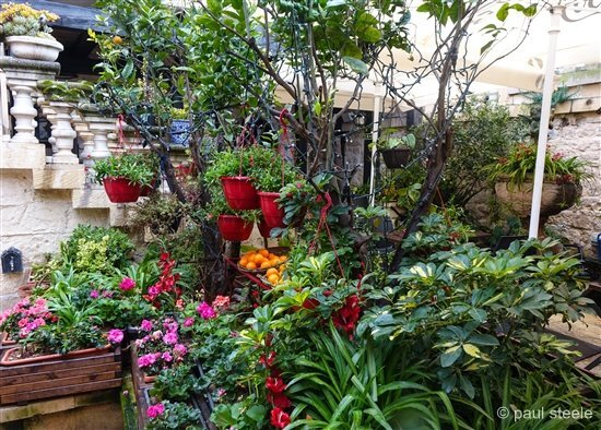 Fontanella outdoor garden
