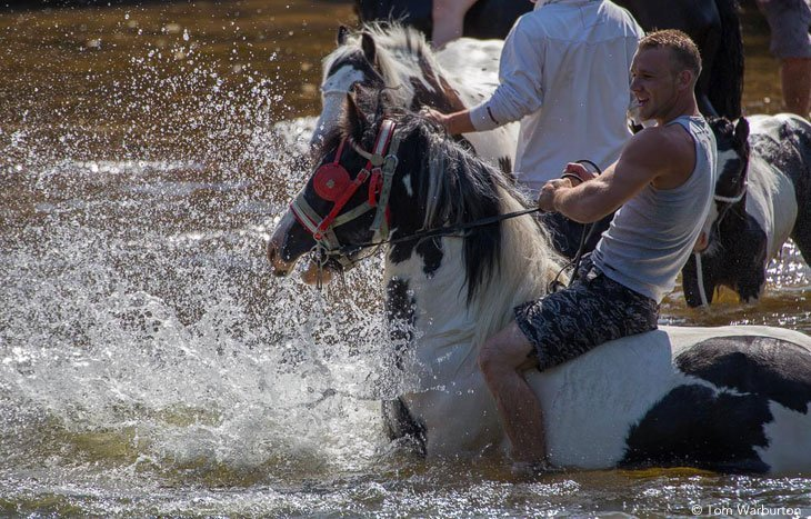 Appleby Horse Fair – Washing Down in the River