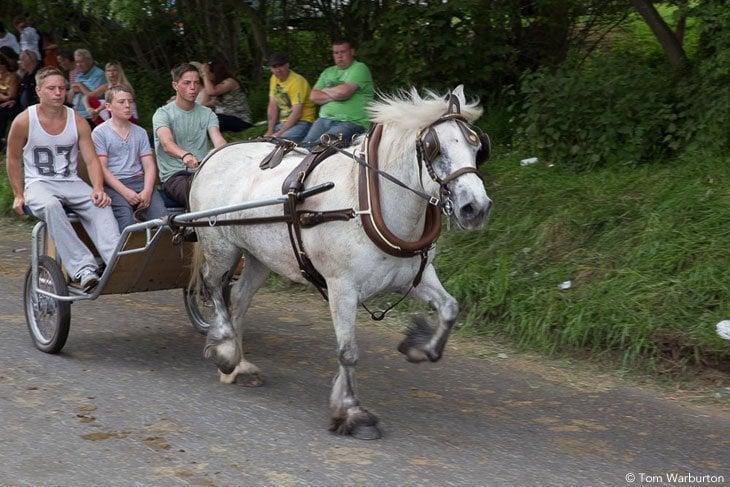 Gypsies-Fair-2103_20130609_00154 Appleby Horse Fair – Trotting and Racing The Flashing Lane