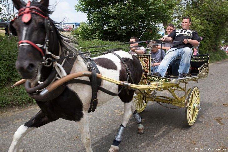 Gypsies-Fair-2103_20130609_00187 Appleby Horse Fair – Trotting and Racing The Flashing Lane