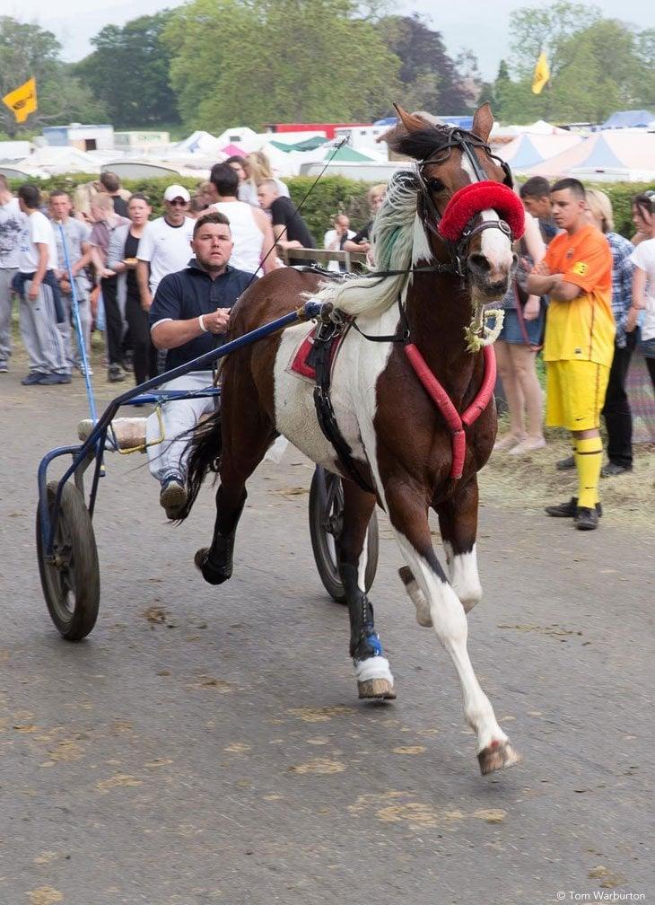 Gypsies-Fair-2103_20130609_00240 Appleby Horse Fair – Trotting and Racing The Flashing Lane