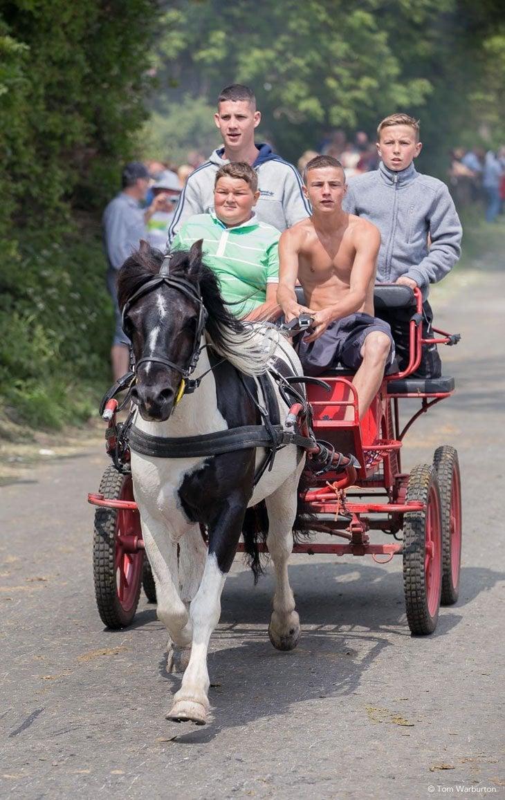 Gypsies-Fair-2103_20130609_00328 Appleby Horse Fair – Trotting and Racing The Flashing Lane