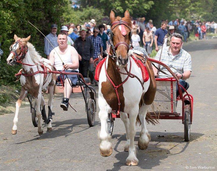 Gypsies-Fair-2103_20130609_00330 Appleby Horse Fair – Trotting and Racing The Flashing Lane