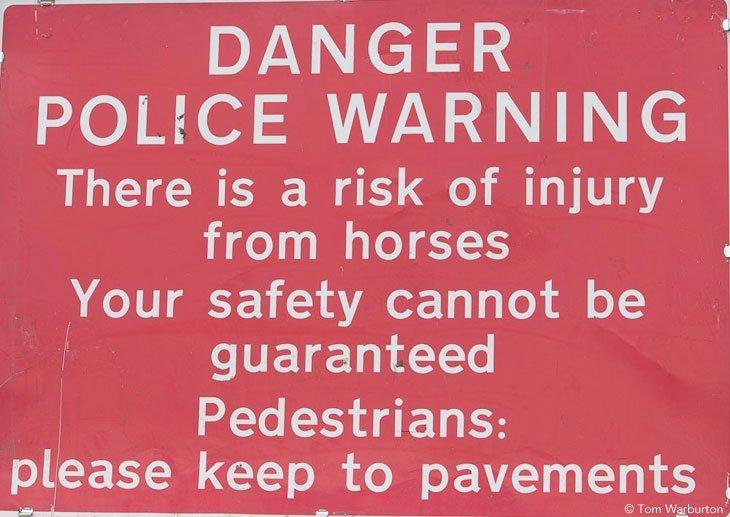 Gypsies-Fair-2103_20130609_00343 Appleby Horse Fair – Trotting and Racing The Flashing Lane