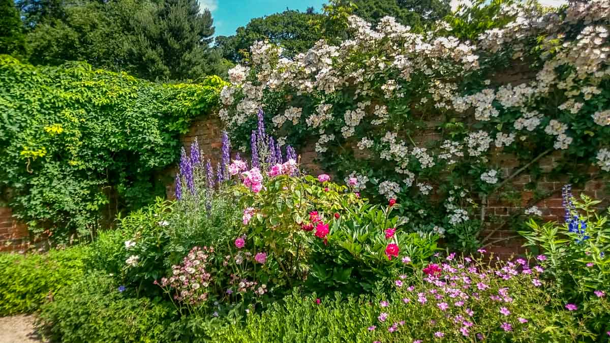 Heavenly-gardens-in-summer_ Calke Abbey Ancient Parkland Walks Through the Seasons