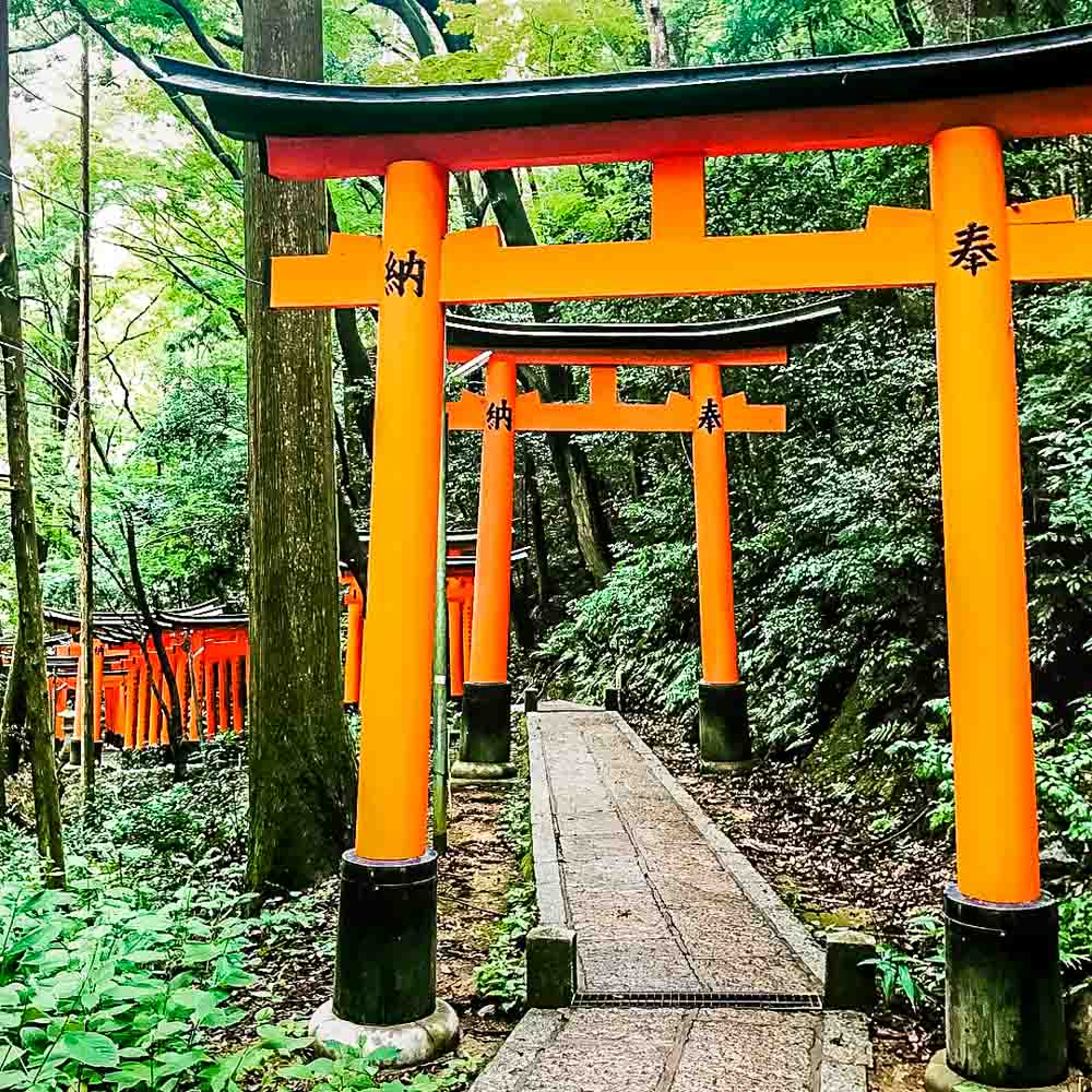 IMG_1104 A Day in Kyoto, Japan