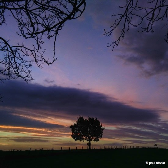 IMG_20141022_081307 Sunrise variety of the Eden Valley