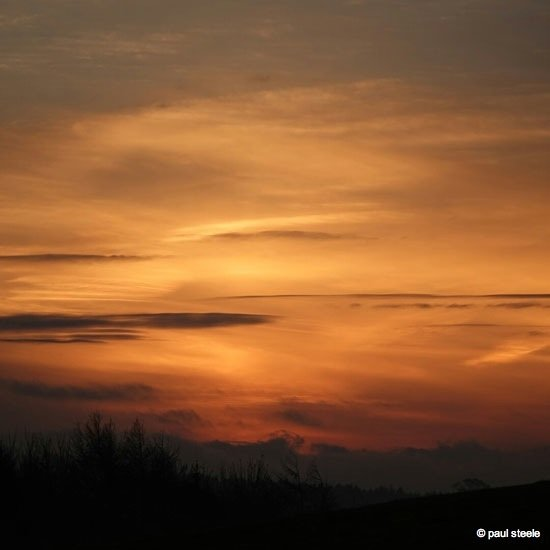 IMG_20141116_075511 Sunrise variety of the Eden Valley
