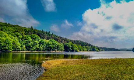 A Walk Around Fewston and Swinsty Reservoirs