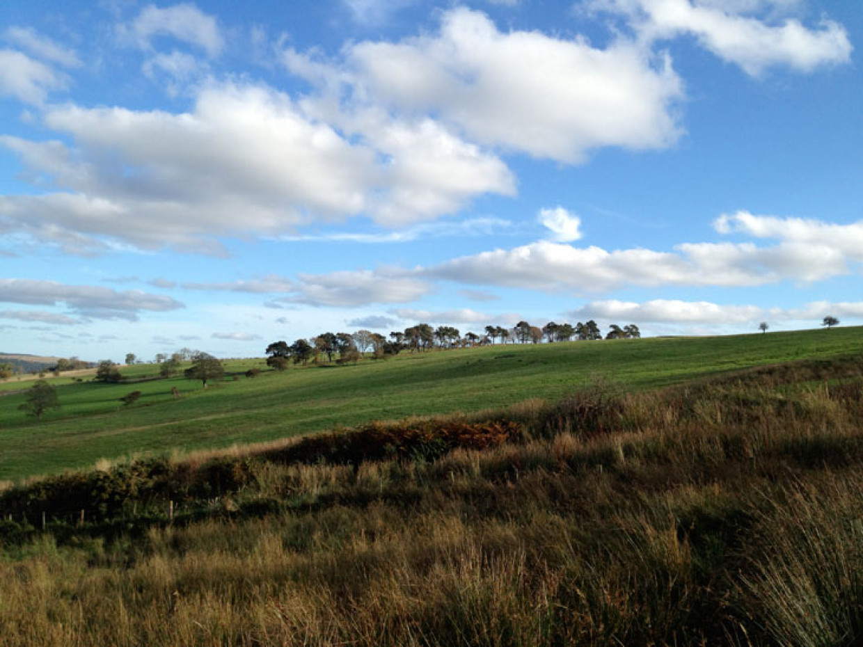 Northumberland – Stepping Out From Rothbury