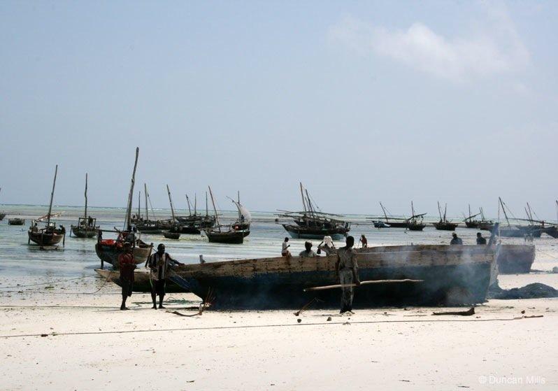IMG_2307-Zanzibar Zanzibar – Africa's exotic spice island