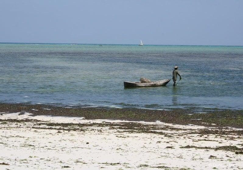IMG_2309-Zanzibar Zanzibar – Africa's exotic spice island