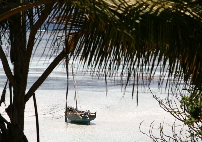 IMG_2407-Zanzibar Zanzibar – Africa's exotic spice island